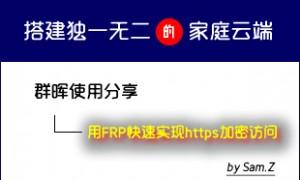 群晖用FRP快速实现https加密访问