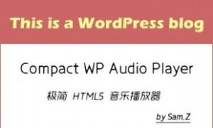 WordPress极简H5音乐播放器