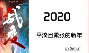 2020战疫下难忘的庚子鼠年